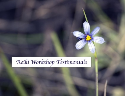 Reiki Workshop Testimonials