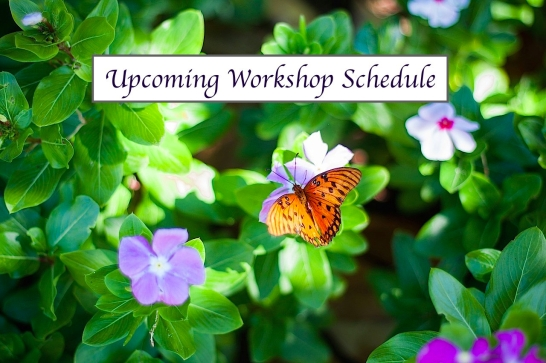 upcoming-workshop-schedule-e1504574739324.jpg