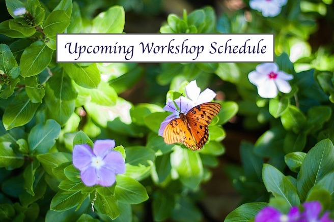 Upcoming Workshop Schedule